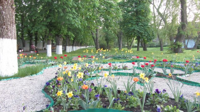 Миргород в мае
